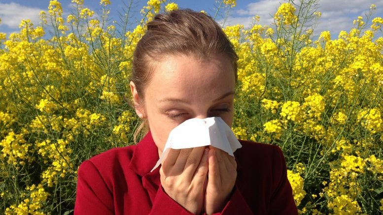 5 Practical Ways to Manage Your Hay Fever Symptoms