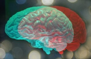 Neurology Assembly Renews Vaccine Support For Sufferers With MS