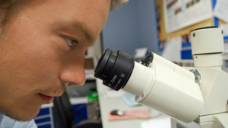 Coronavirus Antibodies Test